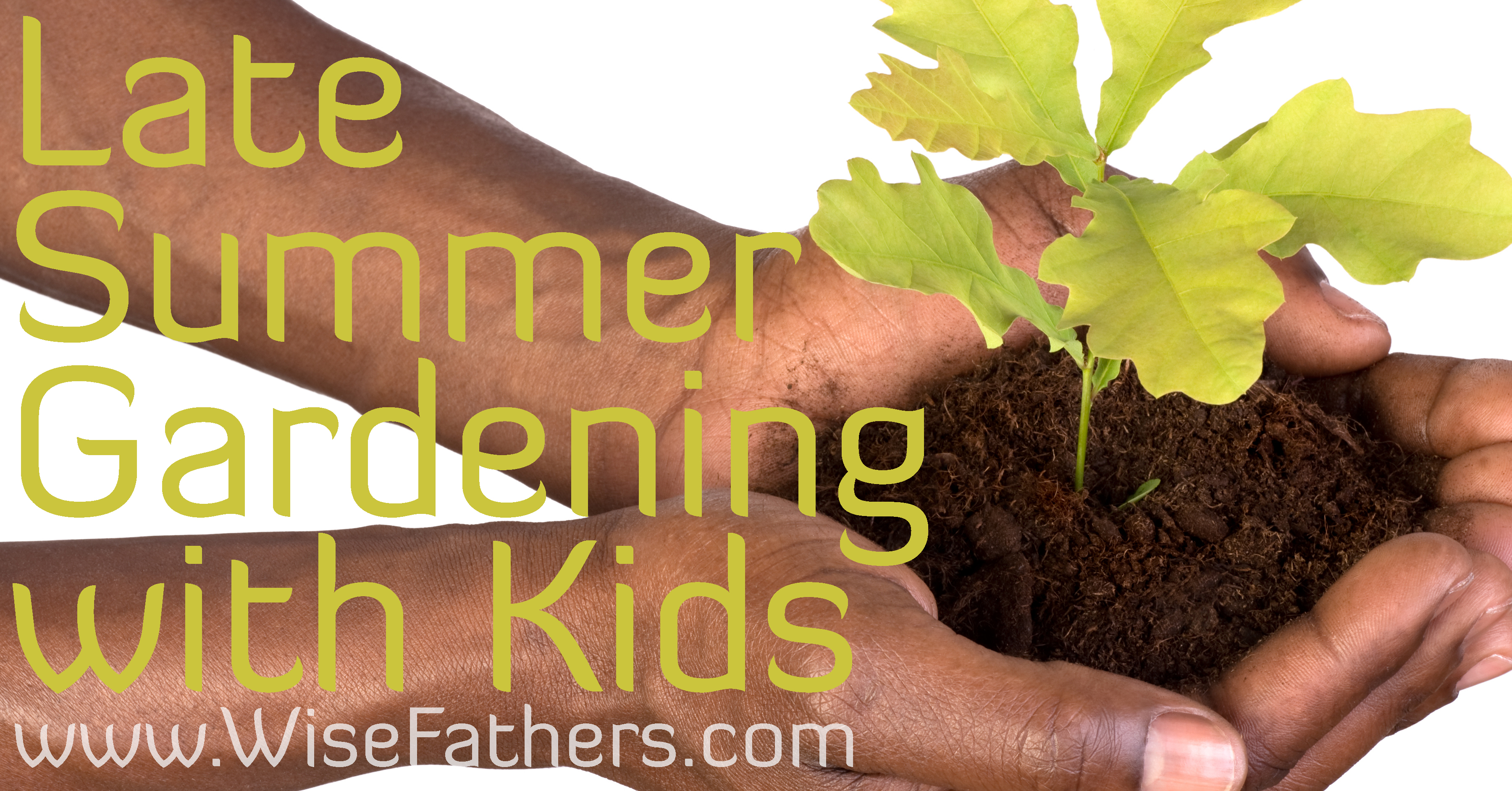 Late Summer Gardening with Kids