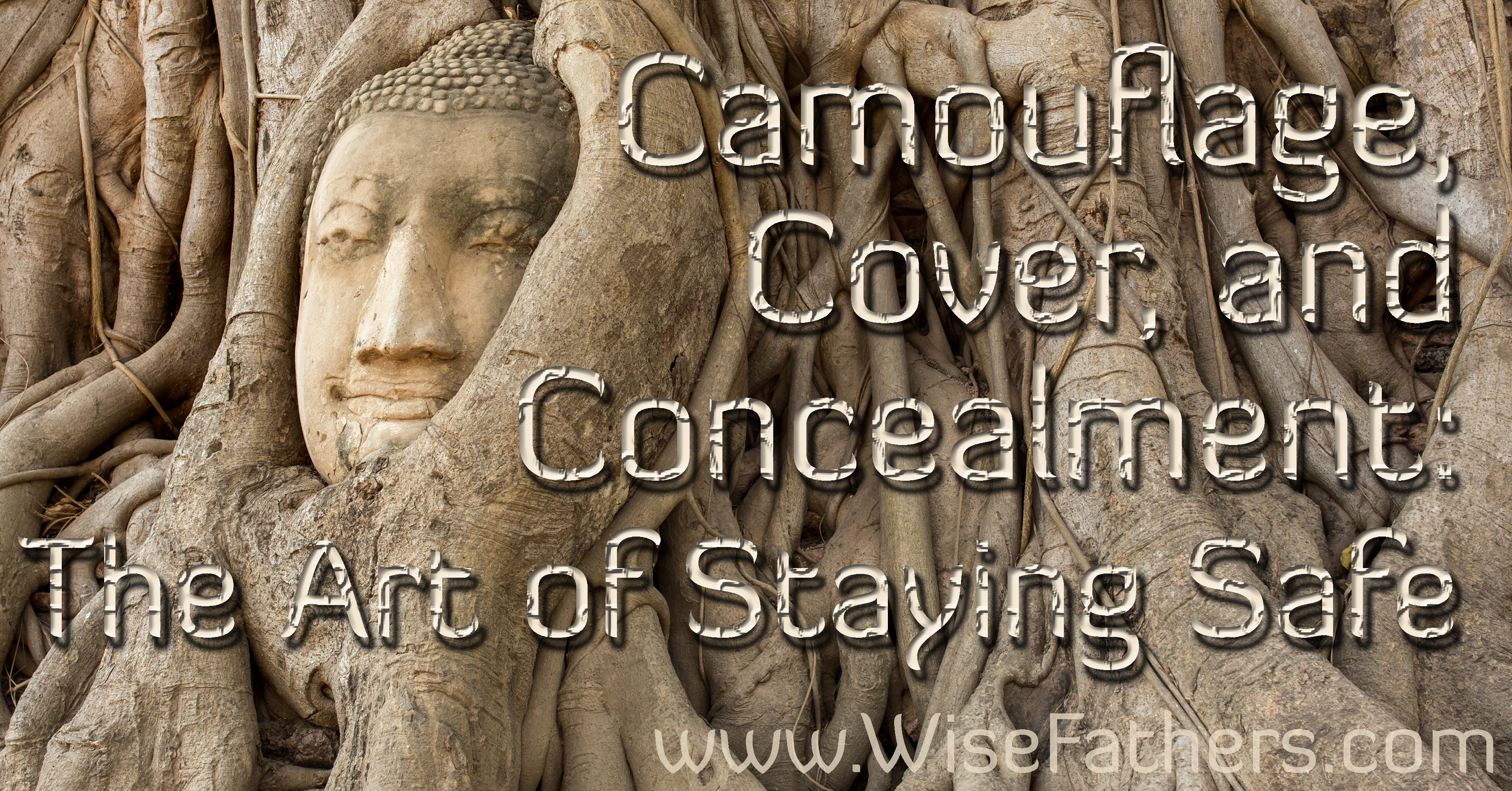Camouflage, Cover, and Concealment: The Art of Staying Safe